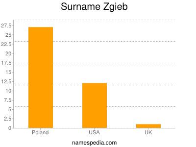 Surname Zgieb