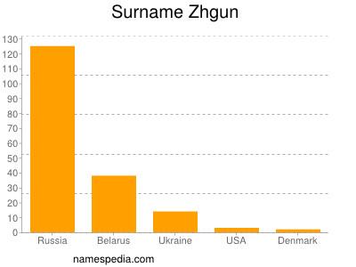 Surname Zhgun
