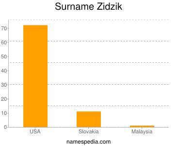 Surname Zidzik