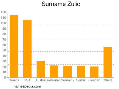 Surname Zulic
