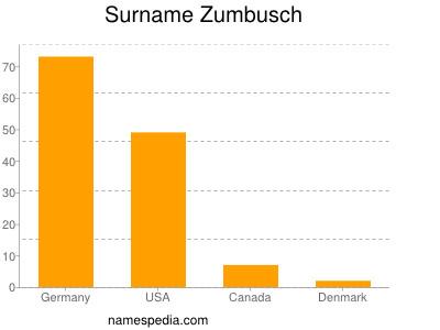 Surname Zumbusch