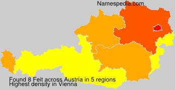 Surname Feit in Austria