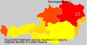 Surname Feldmann in Austria