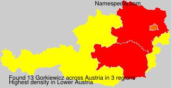 Familiennamen Gorkiewicz - Austria