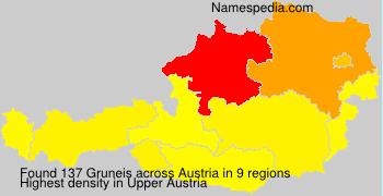 Surname Gruneis in Austria