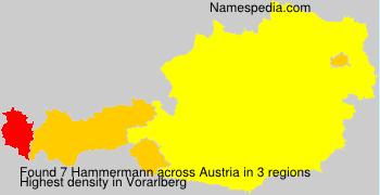 Hammermann