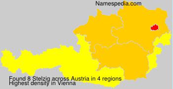 Familiennamen Stelzig - Austria