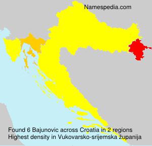 Familiennamen Bajunovic - Croatia
