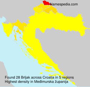 Familiennamen Brljak - Croatia