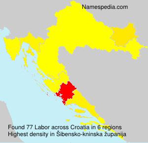 Surname Labor in Croatia