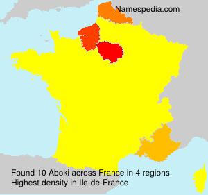Surname Aboki in France