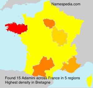 Familiennamen Adamini - France