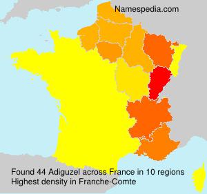 Surname Adiguzel in France