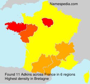 Surname Adkins in France