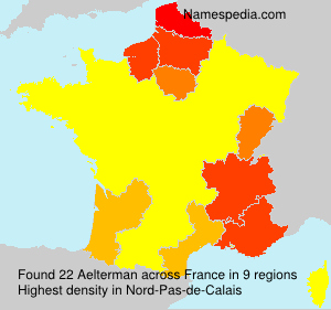 Surname Aelterman in France