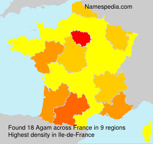 Surname Agam in France
