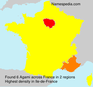 Surname Agami in France