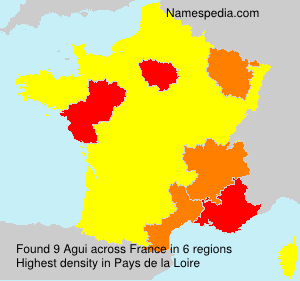 Surname Agui in France
