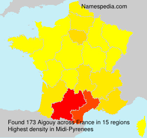 Surname Aigouy in France