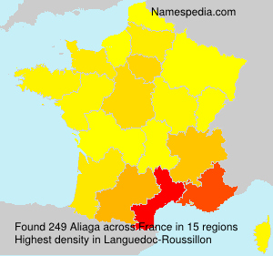 Surname Aliaga in France
