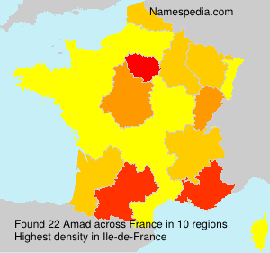 Surname Amad in France