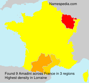 Surname Amadini in France