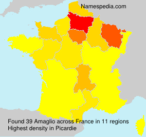 Surname Amaglio in France