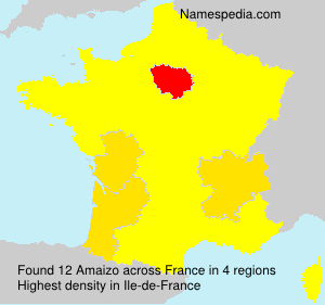 Surname Amaizo in France