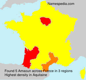 Surname Amaoun in France