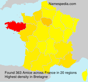 Surname Amice in France