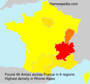 Surname Amiez in France