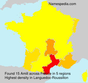 Surname Amill in France