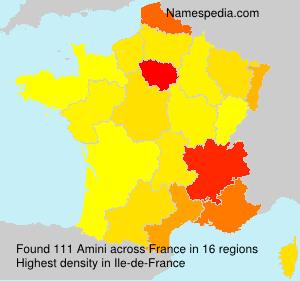 Surname Amini in France