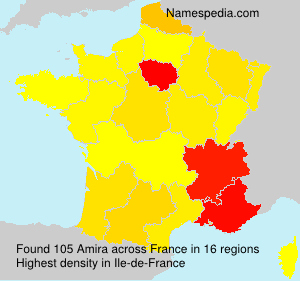 Surname Amira in France
