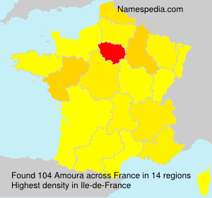 Surname Amoura in France