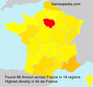 Surname Amouri in France