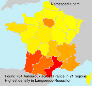 Surname Amouroux in France