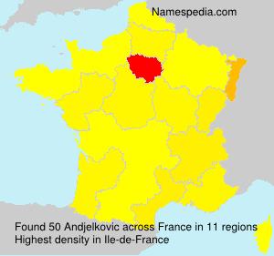 Surname Andjelkovic in France