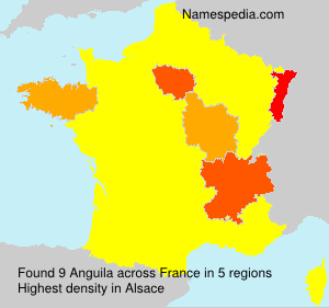 Surname Anguila in France