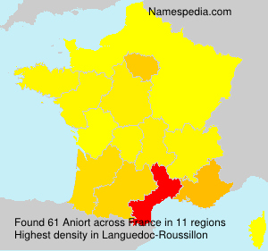 Surname Aniort in France