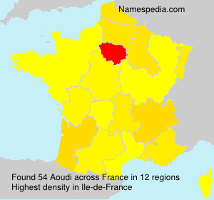 Surname Aoudi in France