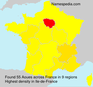 Surname Aoues in France