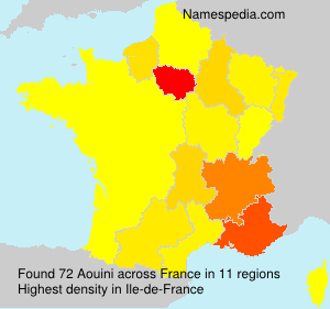 Surname Aouini in France