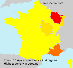 Surname Apy in France