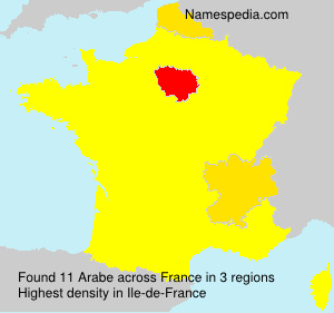 Surname Arabe in France