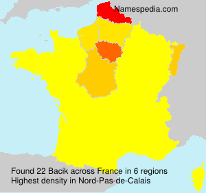 Surname Bacik in France