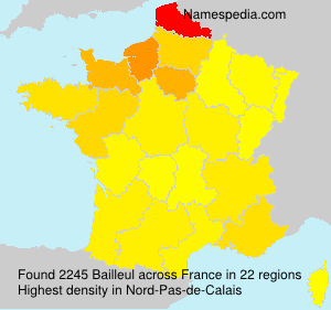 Surname Bailleul in France