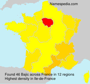 Surname Bajic in France