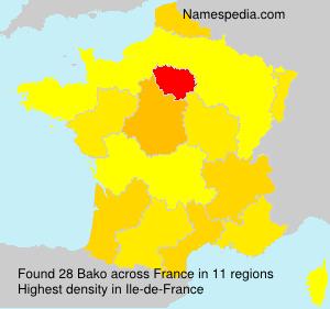 Surname Bako in France