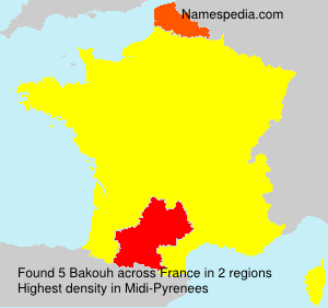 Surname Bakouh in France